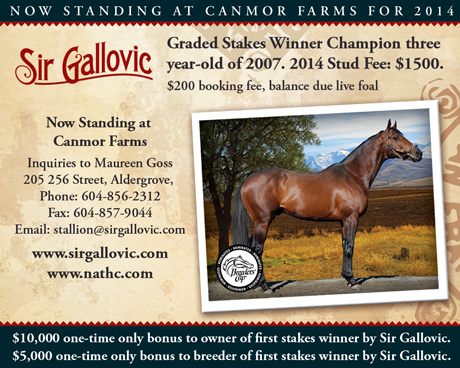 Sir Gallovic 2014