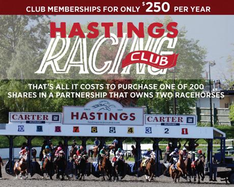 Hastings Racing Club 2015